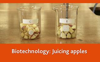 Biotechnology: Juicing apples