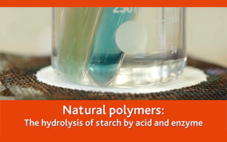 Natural polymers - The hydrolysis of starch by acid and enzyme