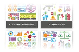 IGCSE Business (0450)